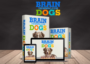 brain training for dogs login